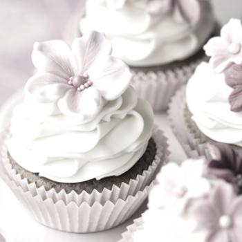 cakes+cupcakes